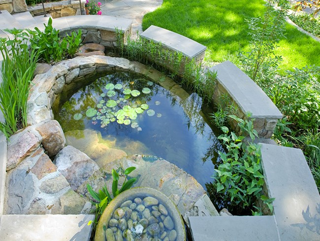 Sustainable Residential Gardens With Aesthetically Pleasing Stormwater  Management Solutions Are On The Radar In 2016. This Soft Scape Rain Garden  With ...